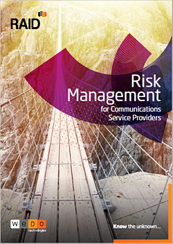 RAID Risk Management
